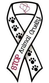 Against Animal Cruelty